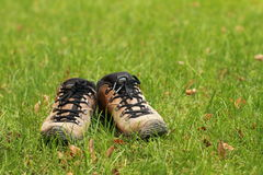 Shoes on the grass. Brown shoes with black shoelaces standing alone on the green grass royalty free stock image