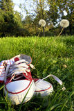 Shoes on grass. View of a pair of athletic shoes on grass Royalty Free Stock Image