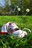 Shoes on grass Royalty Free Stock Image