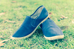 Shoes on green summer grass in park.  Royalty Free Stock Photography