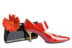 Shoes  and  handbag and flower Royalty Free Stock Images