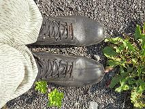 Shoes for hiking throug longer kilometer in nature Stock Images