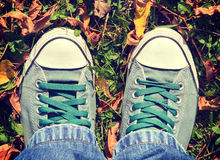 Shoes in the leafs. Male green shoes in yellow leafs from above Royalty Free Stock Photo