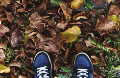 Shoes on a path from the fallen autumn leaves. This is a Photo about walking in the forest or in a park in an autumn season Stock Image