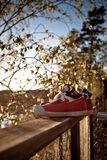 Shoes on a railing Royalty Free Stock Photography