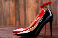 Shoes and red flower. Gerbera and footwear on wood. Choose your perfect shoes. Fashion is part of life Stock Photos