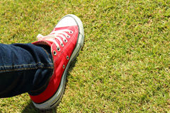 Shoes red on a green grass at the park. Royalty Free Stock Photo