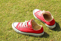 Shoes red on a green grass at the park. Royalty Free Stock Photography