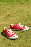 Shoes red on a green grass at the park. Stock Images