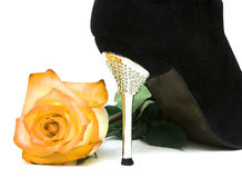 Shoes with rose Royalty Free Stock Images