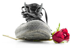 Shoes and Roses Royalty Free Stock Photos
