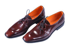 Shoes with a slim elongated toe, made from a smooth brown leather. Royalty Free Stock Photos