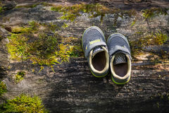 Shoes of a small traveler. Pair of the little shoes standing on the old tree royalty free stock photography