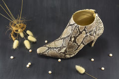 Shoes snakeskin with pearls and spikes Royalty Free Stock Photos