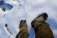 Shoes and snow Royalty Free Stock Images