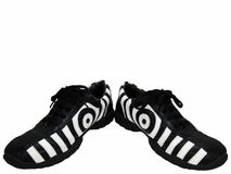Shoes Spread apart. Isolated photo of a pair of zebra design shoes spread apart Royalty Free Stock Images