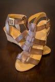 shoes stilfulla kvinnor Royaltyfri Foto
