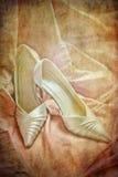 shoes tappning Royaltyfri Bild
