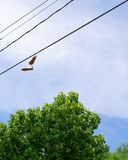 Shoes Tied onto a Powerline royalty free stock images