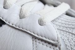 Shoes/Trainers/Sneakers. Close-up view royalty free stock photo
