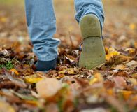 Shoes walking on autumn leaves from rear Stock Images