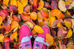 Shoes woman and child standing in many of the fallen autumn Stock Photo