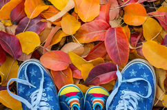 Shoes woman and child standing in many of the fallen autumn Royalty Free Stock Photos
