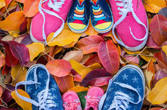 Shoes woman , man, child standing in many of the fallen autumn Stock Photo