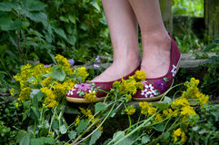 Shoes and yellow flowers Stock Photography