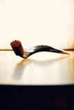 Shofar (рожочок штосселя) стоковая фотография