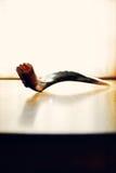 Shofar (le klaxon de la mémoire vive) Photographie stock