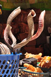 Shofars. Stock Photography