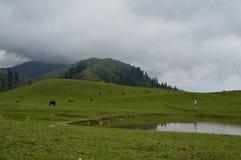 Shogran pakistan della cima di Makra Fotografia Stock Libera da Diritti