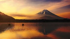 Shoji lake with Mt. Fuji at sunrise. Mt. Fuji or Fujisan  with twilight sky and mist at sunrise in Yamanashi, Japan. Landscape with beautiful reflection with Royalty Free Stock Photos