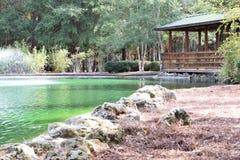 Sholom park w Ocala, Floryda Zdjęcia Royalty Free