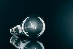 A shone electric bulb. Royalty Free Stock Photos