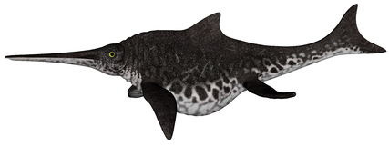 Shonisaurus dinosaur fish - 3D render Stock Image