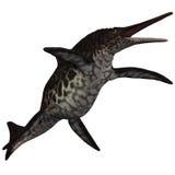 Shonisaurus Icthyosaur su bianco Fotografia Stock Libera da Diritti