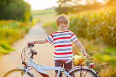Shool kid boy having fun with riding of bicycle. Happy school kid boy having fun with riding of bicycle. Active child making sports with bike in nature. Safety Royalty Free Stock Images