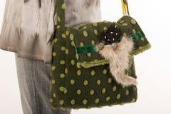 Shooping-bag Royalty Free Stock Photo