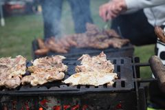 Shoot at barbeque - tasty pork neck and sousage. A full grilled with a pork meal. A tasty pork neck on a barbeque in a camping site royalty free stock image