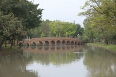 One of a bridge in Chatuchak Park NO.3 royalty free stock images