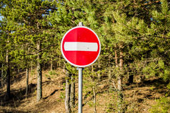 Shooted stop sign. Closeup of shooted STOP sign in the forest Royalty Free Stock Photography