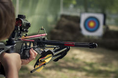 The shooter directed the crossbow towards the colored target. Toned Stock Images