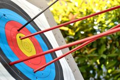Shooting. Arrows in the target.Shooting the central objective Stock Photos