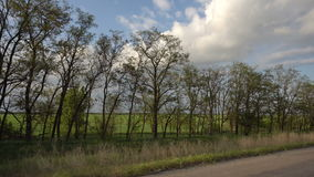 Shooting from a car window. Shooting from the window of a traveling car. Sky and fields with trees stock video footage