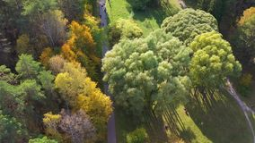 People walk in the Park on a warm autumn day. The wind stirs the trees. Shooting from a height above the Park stock video
