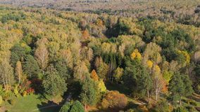 People walk in the Park on a warm autumn day. The wind stirs the trees. Shooting from a height above the Park stock footage