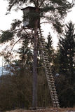 A Shooting Lodge for Hunters. In Austria In A Forest with a ladder on a tree Royalty Free Stock Photo