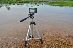 Shooting lotus pond with compact camera on tripod Stock Photo